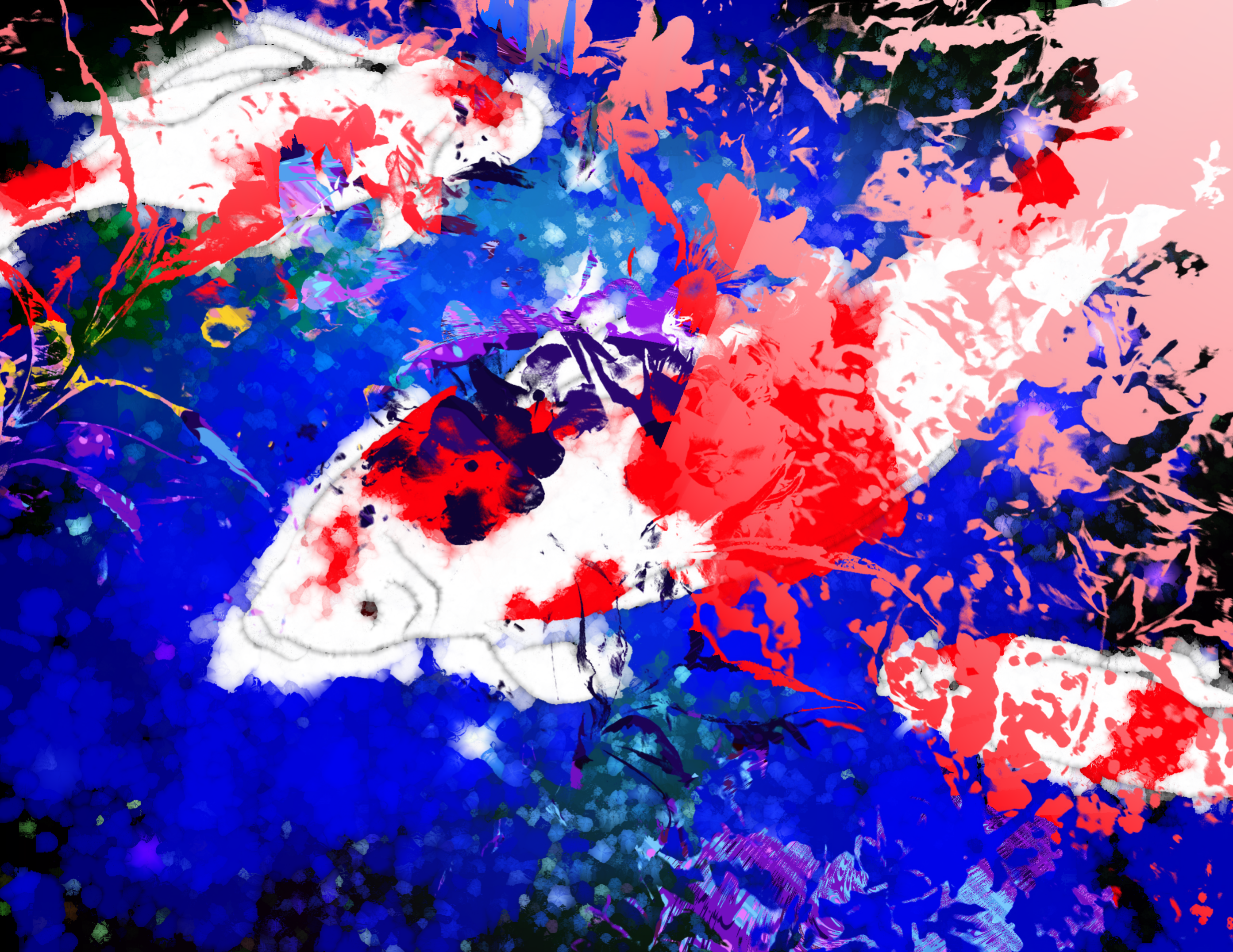 image3A4639_mirror3.png